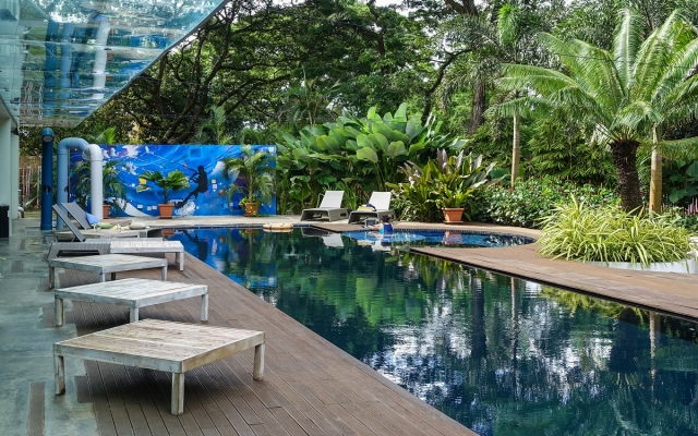 canvas boutique hotel swimming pool