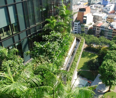 View of Parkroyal on Pickering's plant boxes from above