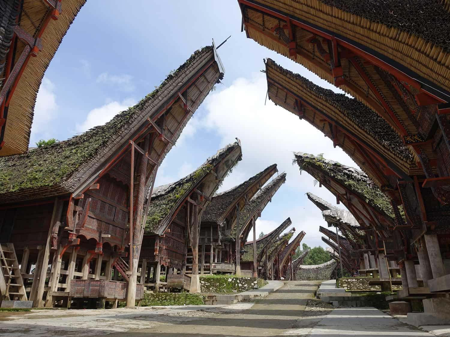 Toraja tongkonan - traditional clan houses